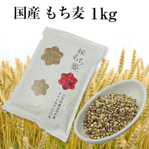 【令和元年】国産 もち麦 1kg 国内産 雑穀米に もちむぎで脱メタボ 食物繊維 食品 もちもちの麦「もち麦」モチムギ 1キロ 無添加【メール便送料無料】ネコポス