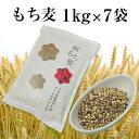 【令和元年 新麦】国産 もち麦 1kg×7袋 7kg 国内産 雑穀米に もちむぎで脱メタボ 食物繊維 食品 もちもちの麦「もち麦」モチムギ 1キロ 無添加 媛もち麦【送料無料】