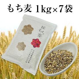 【令和元年6月 新麦】国産 もち麦 1kg×7袋 7kg 国内産 雑穀米に もちむぎで脱メタボ 食物繊維 食品 もちもちの麦「もち麦」モチムギ 1キロ 無添加 媛もち麦【送料無料】
