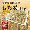 【H30年11月産新麦!】国産 もち麦 1kg 希少な北海道産キラリモチ 100% 雑穀米に 食物繊維 食品 モチムギ 1キロ 無添…