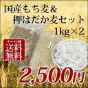 【最大500円オフクーポン】1kg×2個 国産 もち麦&押はだか麦 大麦 食べ比べセット 100% 愛媛県産【メール便送料無料】