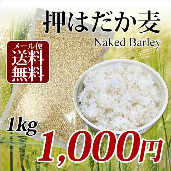 【1000円ポッキリ】国産 押はだか麦 1kg 大麦 もち麦と同じ はだか麦のうるち性 100% 愛媛県産【メール便送料無料】大麦βグルガンが豊富!グルメ