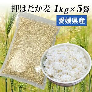 国産 押はだか麦 1kg×5袋 お徳用 大麦 もち麦と同じ はだか麦のうるち性 100% 愛媛県産【送料無料】大麦βグルガンが豊富!