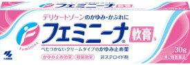 【第2類医薬品】小林製薬 フェミニーナ軟膏 30g