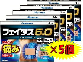 ★フェイタス5.0大判サイズ14枚×5個【第2類医薬品】