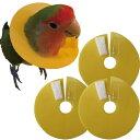 鳥用エリザベスカラー3枚セット
