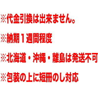 【送料無料】銀座千疋屋銀座レアチーズケーキPGS-044※北海道・沖縄・離島は発送不可(代引不可)(ラッピング選択不可)