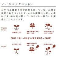 今治タオル桜