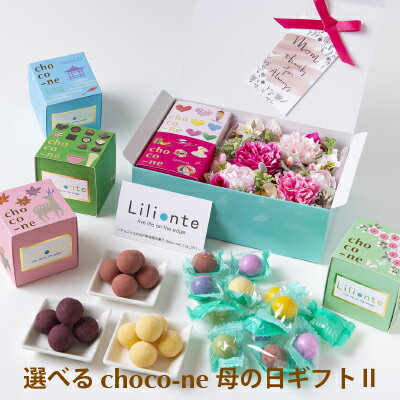 【choco-ne&アーティシャルフラワー 母の日ギフト2】 ギフト 母の日 ユニーク ラムネ チョコレート 個包装 詰合わせ ショコネ 奈良土産 ラムネ菓子 リリオンテ chocone 母の日ギフト 花 カーネーション