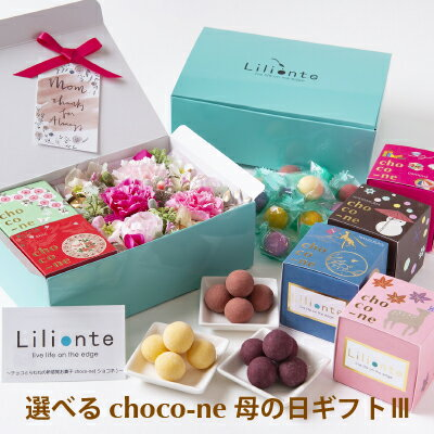 【choco-ne&アーティシャルフラワー 母の日ギフト3】 ギフト 母の日 ユニーク ラムネ チョコレート 個包装 詰合わせ ショコネ 奈良土産 ラムネ菓子 リリオンテ chocone 母の日ギフト 花 カーネーション
