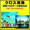 【返送料無料】 クロス現像+CDデータ書き込み  FUJI  KODAK AGFA LOMO  のリバーサルフィルムから→C−41現像   135 120 22...