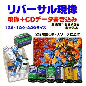 リバーサルフィルム リバーサル現像+CDデータ書き込み  FUJI FUJICHROME Kodak EKTACHROME ELITECHROME  リバーサル現像 135 120 220  1本から受付
