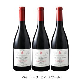 [ 3本 まとめ買い ] ペイ ドック ピノ ノワール ( レ ペイロタン ) 2019年 フランス 赤ワイン ミディアムボディ 750ml×3本