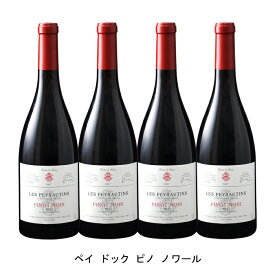 [ 4本 まとめ買い ] ペイ ドック ピノ ノワール ( レ ペイロタン ) 2019年 フランス 赤ワイン ミディアムボディ 750ml×4本