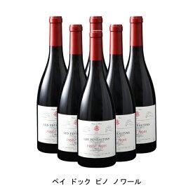 [ 6本 まとめ買い ] ペイ ドック ピノ ノワール ( レ ペイロタン ) 2019年 フランス 赤ワイン ミディアムボディ 750ml×6本