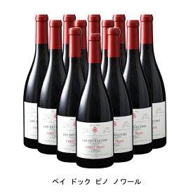 [ 12本 まとめ買い ] ペイ ドック ピノ ノワール ( レ ペイロタン ) 2019年 フランス 赤ワイン ミディアムボディ 750ml×12本