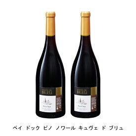 [ 2本 まとめ買い ] ペイ ドック ピノ ノワール キュヴェ ド ブリュ ( フォンカリュ ) 2018年 フランス 赤ワイン ミディアムボディ 750ml×2本