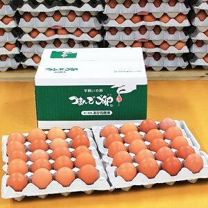 【採れたて農場直送!】つまんでご卵 大玉40個 化粧箱
