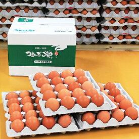 【採れたて農場直送!】つまんでご卵 大玉60個 化粧箱