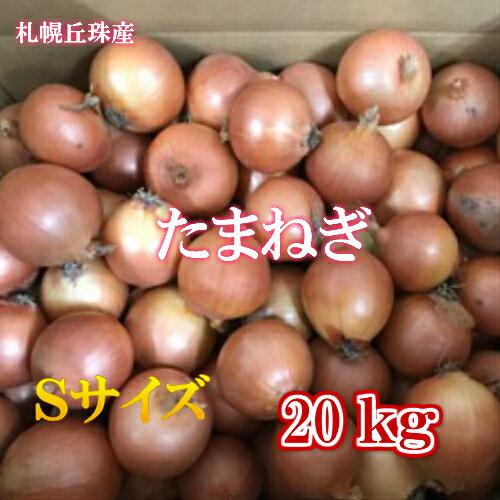 北海道丘珠産たまねぎ/Sサイズ/20kg【送料無料※九州・沖縄を除く】