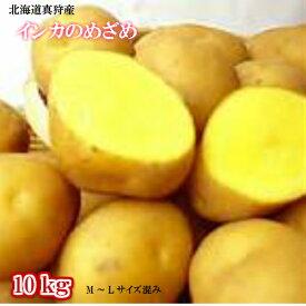 北海道真狩産/じゃがいも/インカの目覚め/10kg/M〜Lサイズ【送料無料】