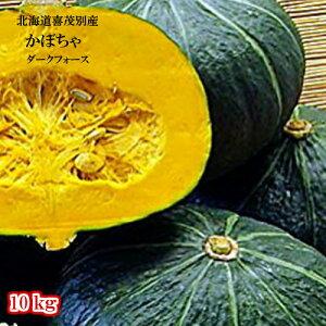 北海道喜茂別産/かぼちゃ/ダークフオース/10kg/【送料無料】