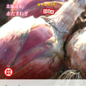 北海道真狩産/赤たまねぎ/M〜Lサイズ混み/10kg