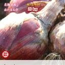 北海道真狩産/赤たまねぎ/M〜Lサイズ混み/20kg【送料無料※九州・沖縄を除く】