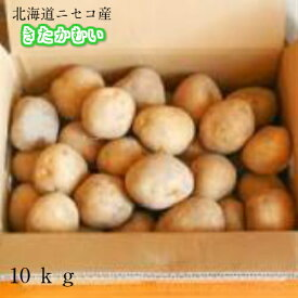 北海道産/じゃがいも/きたかむい/10kg【送料無料】