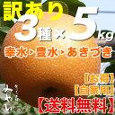 【送料無料/訳あり】和梨 5kg × 3種セット幸水+豊水+あきづきみやびのワケアリは他店とは、ひと味違います!梨 幸水 豊水 秋づき …