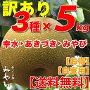 【送料無料/訳あり】和梨 5kg × 3種セット幸水 + あきづき + みやびみやびのワケアリは他店とは、ひと味違います!梨 幸水 秋づき …