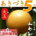 【あきづき (秋月)梨】5個入り 大玉 約2.3kg  梨の玉サイズ:4Lと5L限定