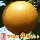 【送料無料/訳あり】和梨 5kg × 3種セットあきづき+新高+みやびみやびのワケアリは他店とは、ひと味違います!梨 豊水梨 新高梨 に…
