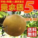 【送料無料】豊水梨 5kg みやびのワケアリは他店とは、ひと味違います! 【数量限定】豊水 梨 和梨 生産者直送 幸水 茨城