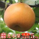 【新種】恵水 5kg 【大玉梨】梨の玉サイズ:6L〜3L