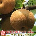 【送料無料/訳あり】和梨 5kg × 3種セット幸水+豊水+みやびみやびのワケアリは他店とは、ひと味違います!梨 幸水 秋づき にっこり…
