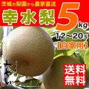 【送料無料 / 訳あり】幸水梨 5kg みやびのワケアリは他店とは、ひと味違います! 【数量限定】幸水 梨 和梨 生産者直送 茨城