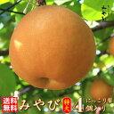 【送料無料】みやび 特大玉 4個入り  約2.5kg以上 希少な大玉 8Lサイズ にっこり梨