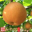 【送料無料】みやび 梨 大玉 6個入り  約3.2kg希少な大玉  極上のしずく梨の玉サイズ:6L〜7L豊水 + 新高 和梨 【にっこり梨】