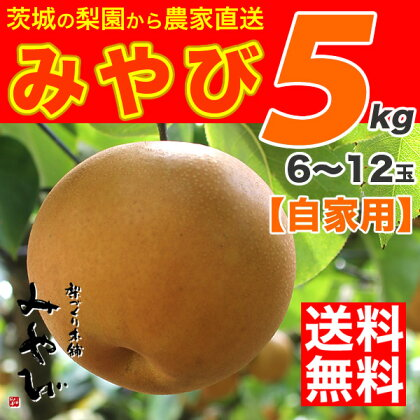 【送料無料】みやび5kg【にっこり梨】他店とは、ひと味違います!【梨づくり本舗みやび】の最高傑作豊水と新高から生まれた最高級梨