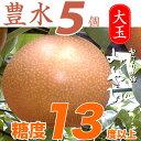 【早期予約限定 / 送料無料 /ポイント5倍】【豊水(ほうすい)梨】 5個入り 大玉 約2.3kg  極上の雫 茨城名産和梨 梨の玉サイズ:4L…