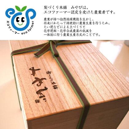 【新高(にいたか)梨】2個入り【桐箱】贈答向け超希少大玉9Lサイズ贈り物