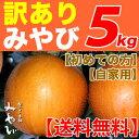 【送料無料/ 訳あり】みやび 5kg【にっこり 梨】 他店とは、ひと味違います!【梨づくり本舗みやび】の最高傑作豊水と新高から生まれた最高級梨