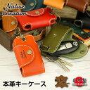 Nc3711-tmb01