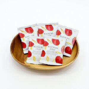 なつめチップ12g×5個セット なつめいろ 母の日 新生活 ご挨拶 ギフト 砂糖不使用 無添加 なつめ茶 棗 ナツメ ドライフルーツ 薬膳 乾燥なつめ なつめ チップ プレゼント ギフト ダイエット 美