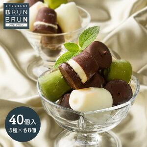 ブラン ブリュン アイス ボール セット チョコ バニラ 抹茶 マンゴー バナナ 5種類 各8個 計40個 入り ホワイト チョコレート 詰め合わせ プレゼント アイスクリーム スイーツ 花以外 BB-IB5 贈