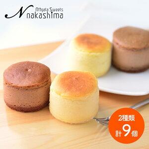 ナカシマ チーズとショコラのスフレ セット 大糸チーズ 6個 半熟ショコラ 3個 計9個 NS-004 洋菓子 お菓子 お取り寄せ 特産 手土産 お祝い 詰め合せ おすすめ 贈答品 内祝い お礼 お取り寄せス
