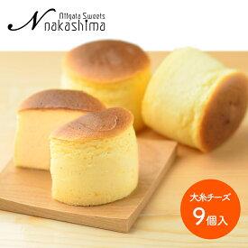 【送料無料】 ナカシマ 大糸チーズ 9個 NS-005 洋菓子 お菓子 お歳暮 お取り寄せ 特産 手土産 お祝い 御歳暮 詰め合せ おすすめ 贈答品
