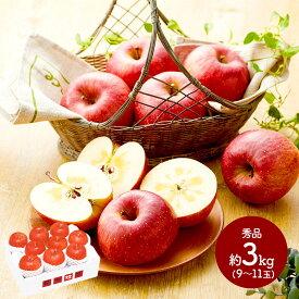 送料無料 信州りんご 秀品9〜11玉 計約3kg IWB2027 リンゴ 青果 果物 フルーツ ギフト 詰め合わせ お取り寄せ 特産 贈答品 内祝い お礼 2020 お取り寄せグルメ ギフト