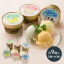 【送料無料】 いつもありがとうラベル 十勝 アイスクリーム 3種 セット 計9個 北海道産 赤肉メロン 青肉メロン ミルク…